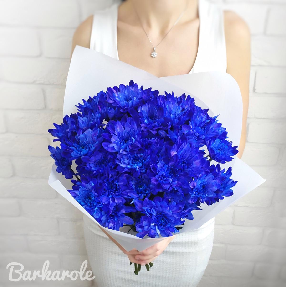 большой букет синие хризантемы фото этом увлечение сферой